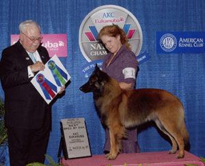 veterinarian and faculty member